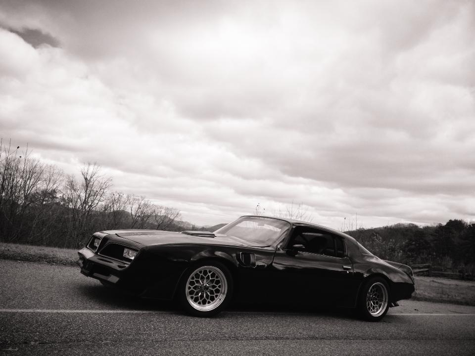 78 Trans Am (my car)